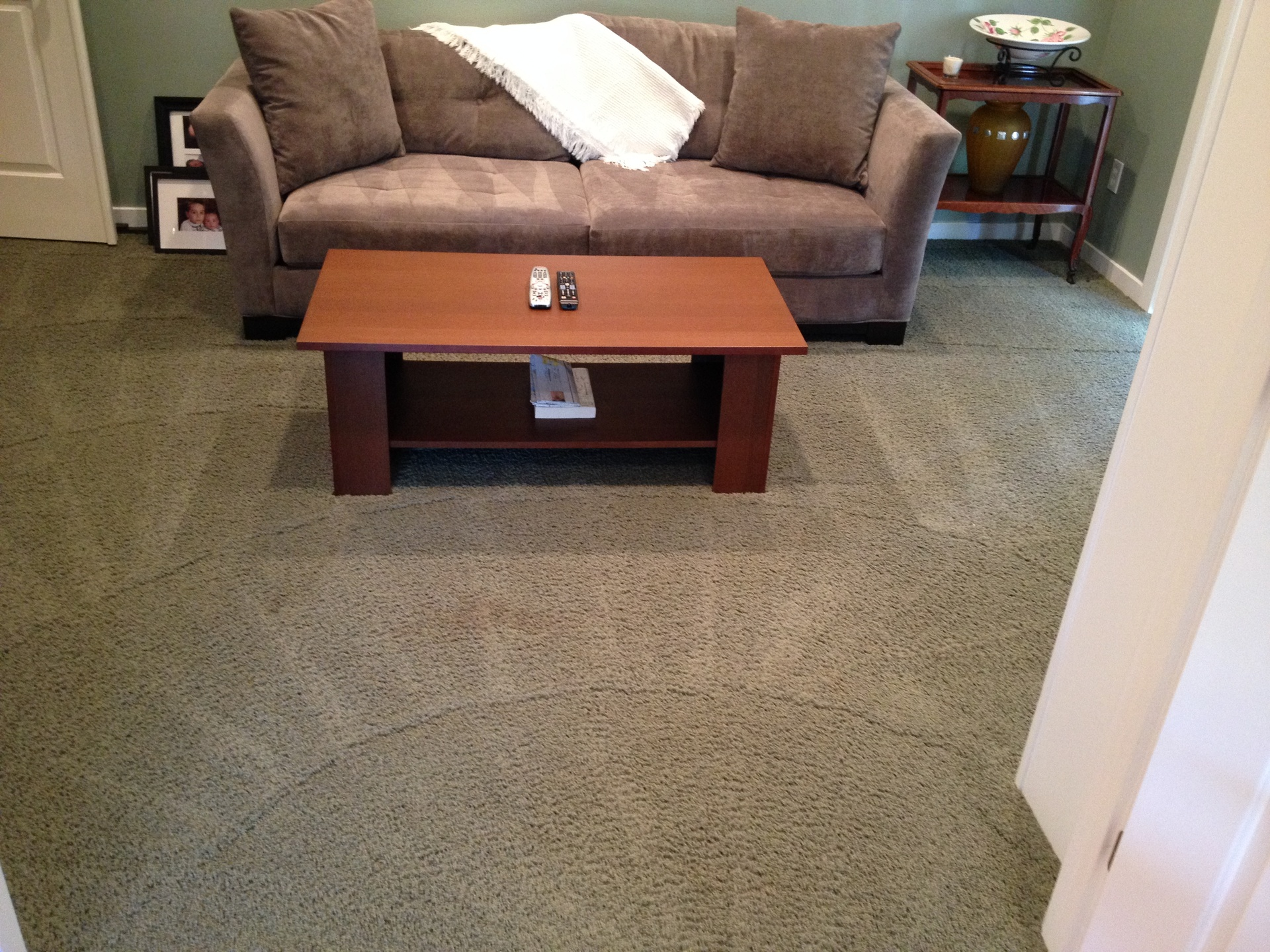 Blue Ribbon Carpet Upholstery Cleaning Olympia Wa Carpet